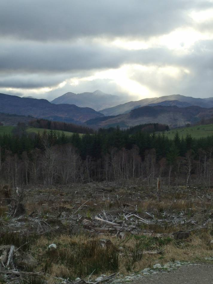 LLD forum 2012, Strathpeffer, somewhat ironic Forestry Commission mono culture destruction around the village - 6:25pm&nbsp;11<sup>th</sup>&nbsp;Mar.&nbsp;'12