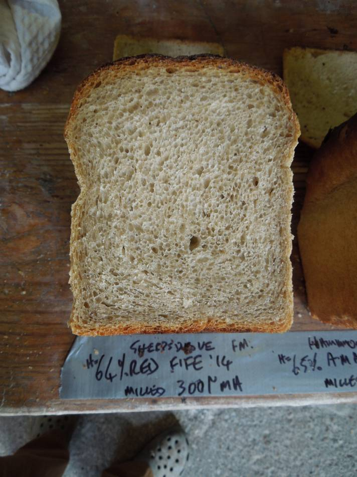 Red Fife milled on Moulin Astrie, 64% hydration - 11:28am&nbsp;22<sup>nd</sup>&nbsp;Sep.&nbsp;'14