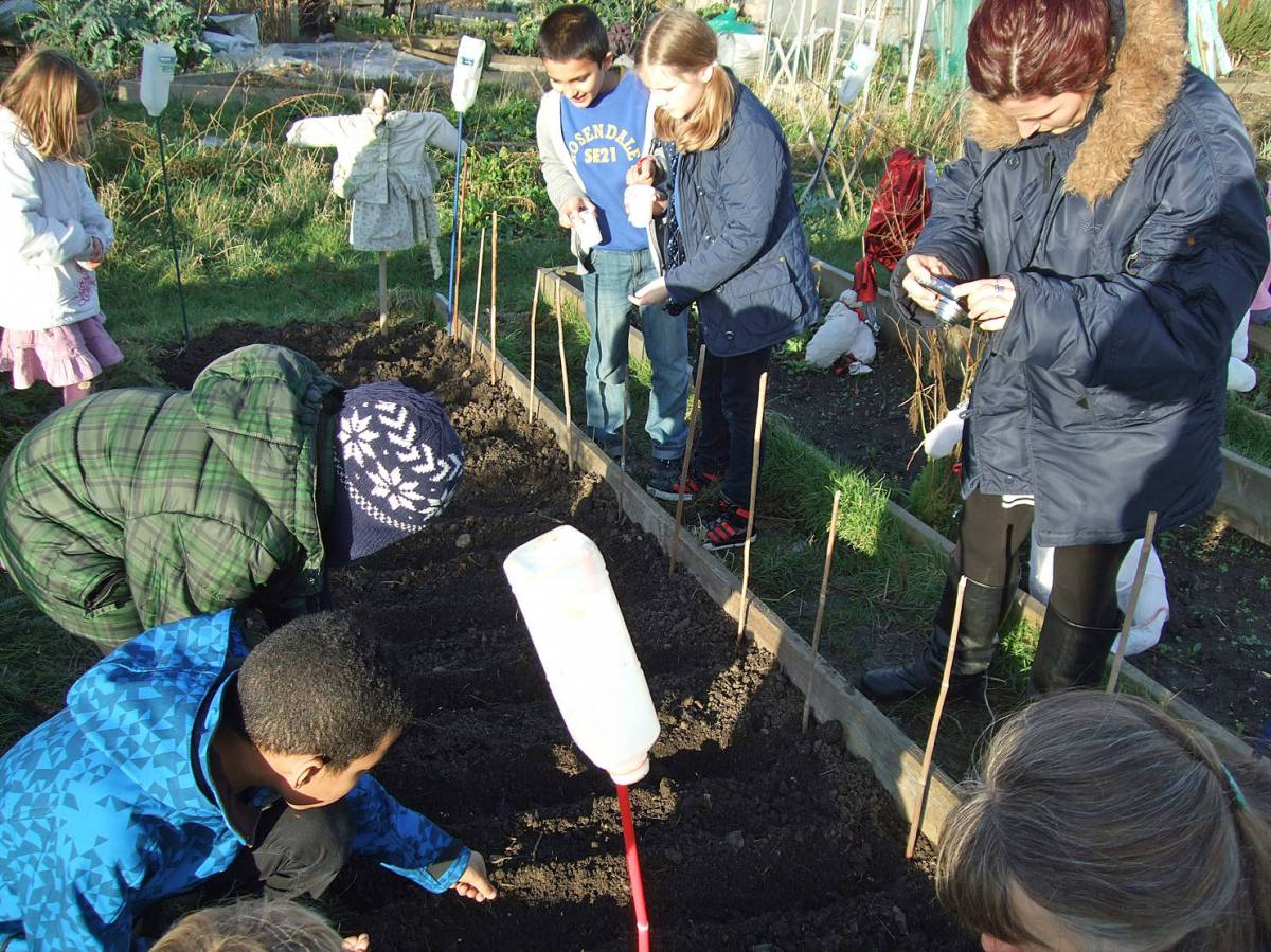 sowing with Rosendale Primary School - 3:57pm&nbsp;27<sup>th</sup>&nbsp;Jan.&nbsp;'12