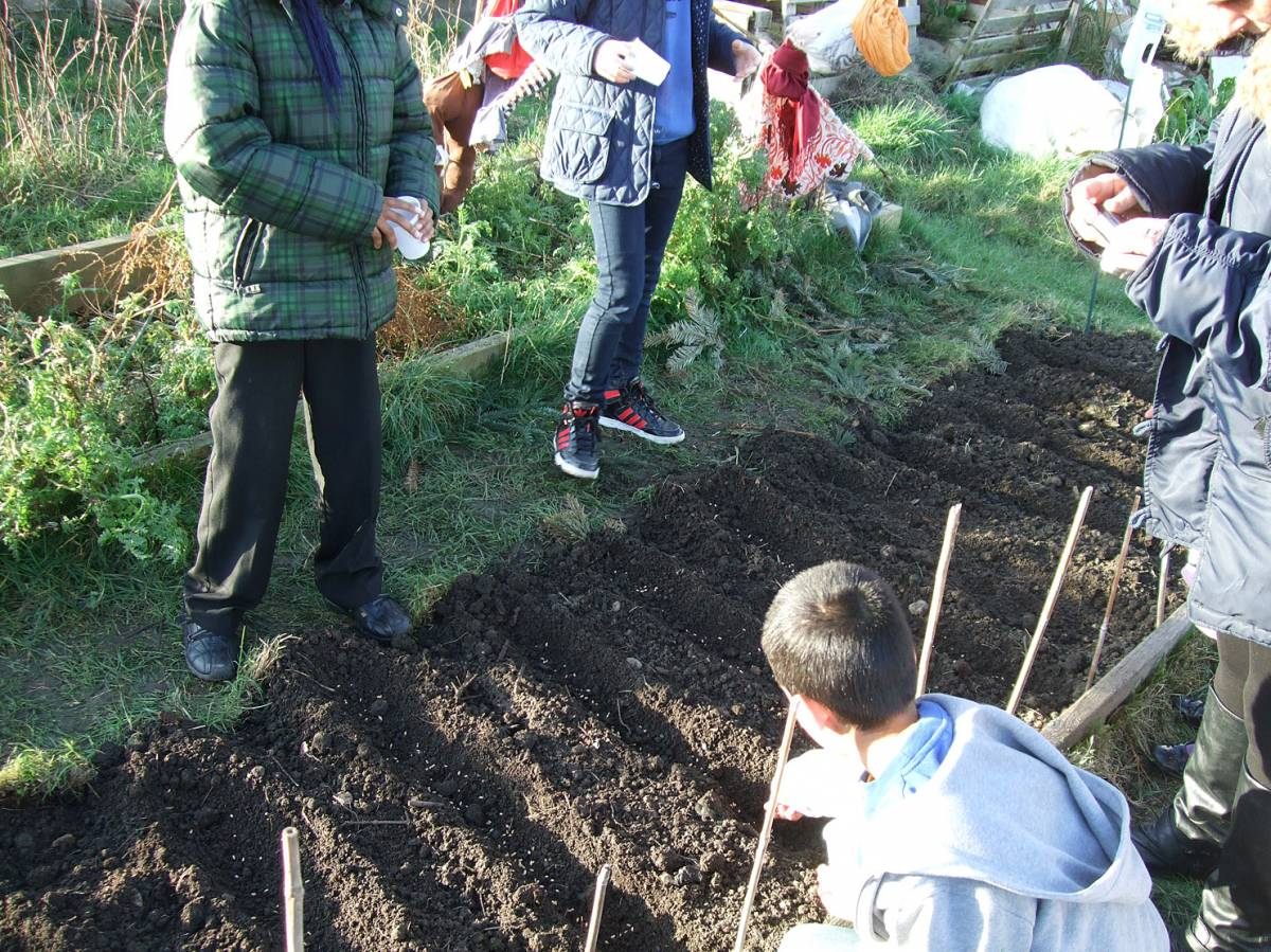sowing with Rosendale Primary School - 3:58pm&nbsp;27<sup>th</sup>&nbsp;Jan.&nbsp;'12