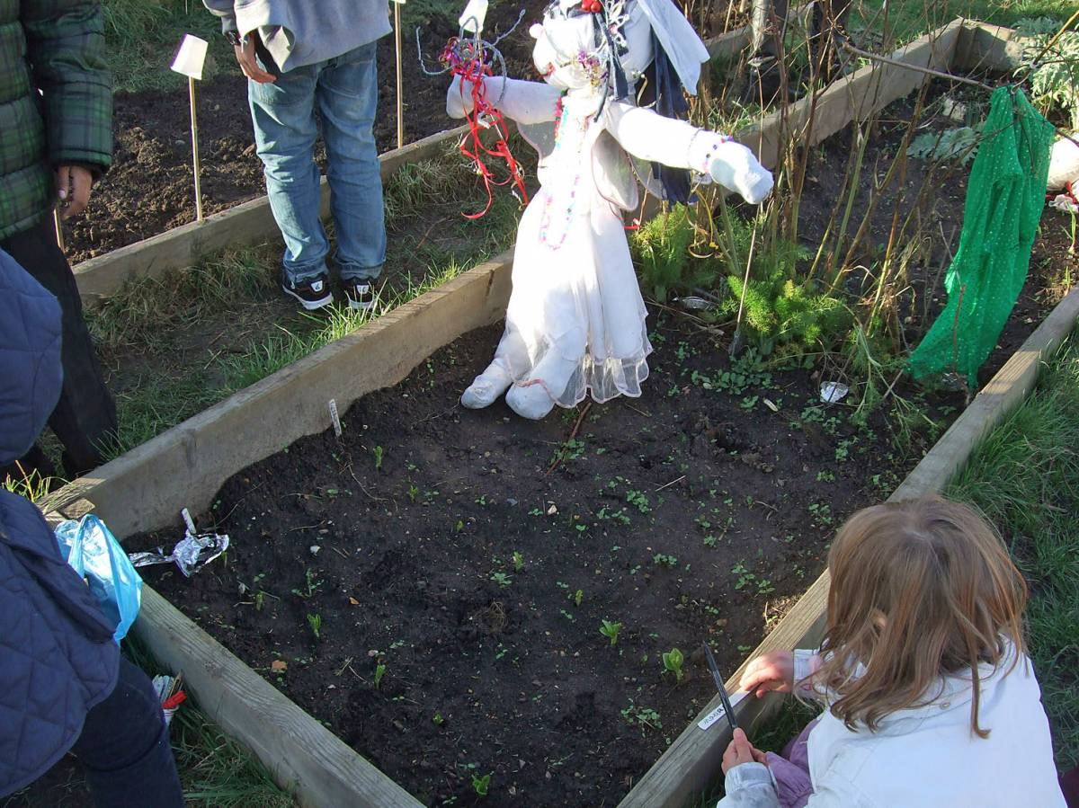 sowing with Rosendale Primary School - 4:05pm&nbsp;27<sup>th</sup>&nbsp;Jan.&nbsp;'12