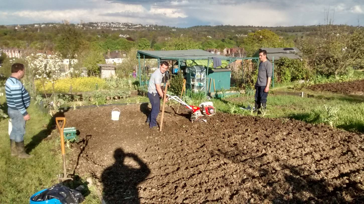 potato planting, Madeiran style, London '16 - 6:03pm&nbsp;30<sup>th</sup>&nbsp;Apr.&nbsp;'16  <a href='http://maps.google.com/?t=h&q=51.444172,-0.101093&z=15' target=_blank><img src='http://www.brockwell-bake.org.uk/img/marker.png' style='border:none;vertical-align:top' height=16px></a>