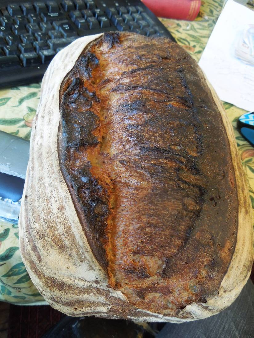 <a href='http://lbpedlar.com/' target='_blank'>LBP</a> white sourdough - 2:58pm&nbsp;14<sup>th</sup>&nbsp;Dec.&nbsp;'16