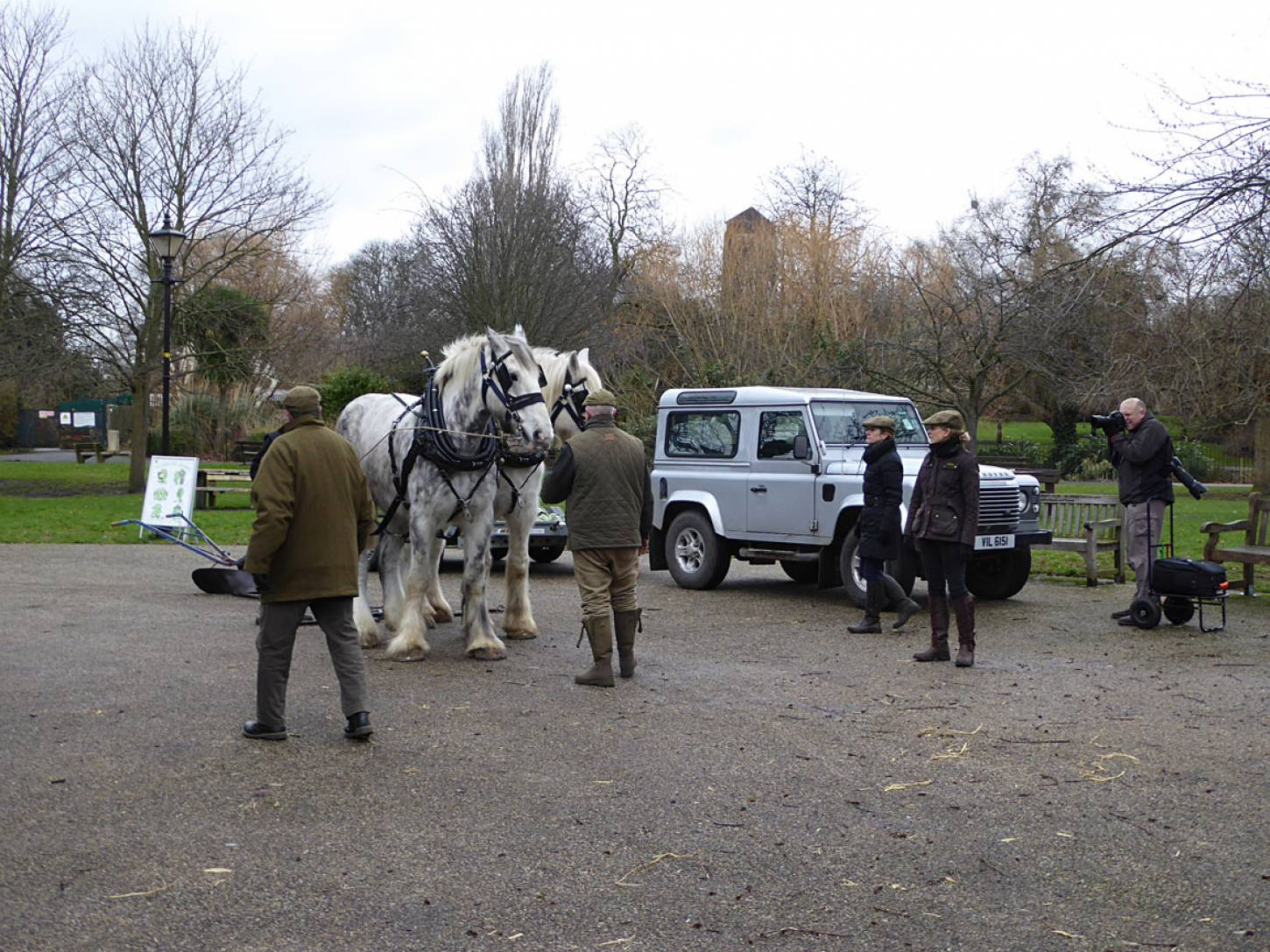 Shire horses, Heath and Nobby with ploughman Tom Nixon from <a href='http://www.operationcentaur.com/' target='_blank'>Operation Centaur</a> come to plough the <a href='https://twitter.com/ruskinparkse5?lang=en' target='_blank'>Ruskin Park</a> wheat patch - 12:47pm&nbsp;9<sup>th</sup>&nbsp;Feb.&nbsp;'18