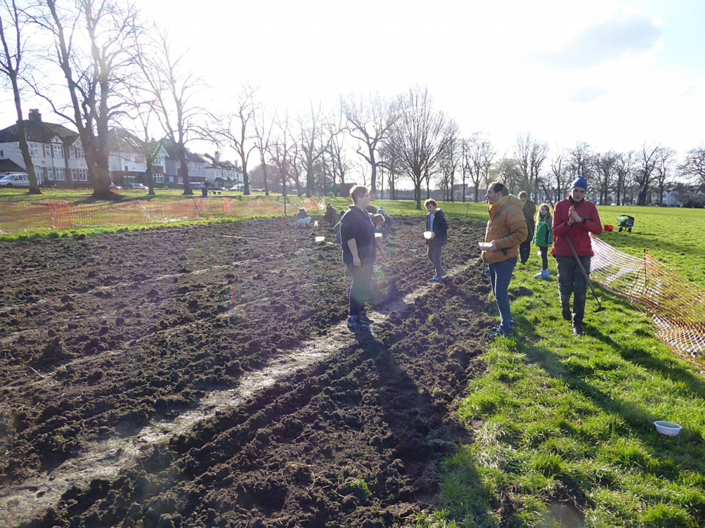 wheat goes in after harrowing on <a href='https://www.friendsofruskinpark.org.uk/' target='_blank'>Ruskin Park</a> - 3:27pm&nbsp;17<sup>th</sup>&nbsp;Feb.&nbsp;'18