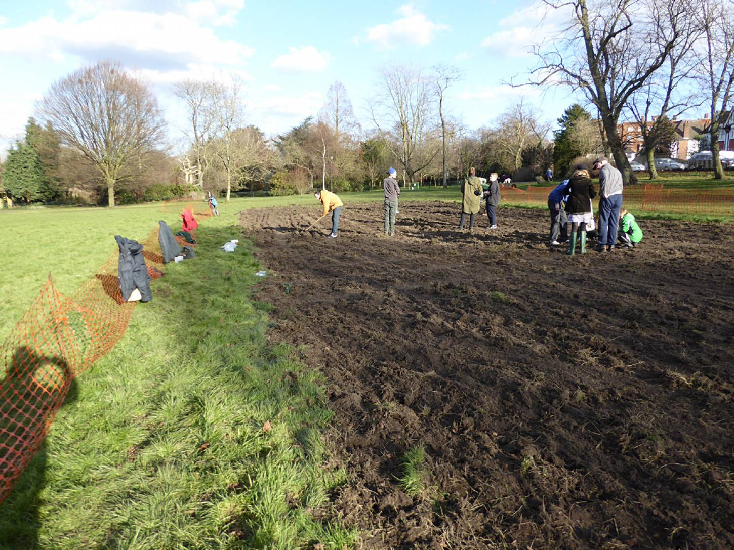 wheat goes in after harrowing on <a href='https://www.friendsofruskinpark.org.uk/' target='_blank'>Ruskin Park</a> - 4:14pm&nbsp;17<sup>th</sup>&nbsp;Feb.&nbsp;'18