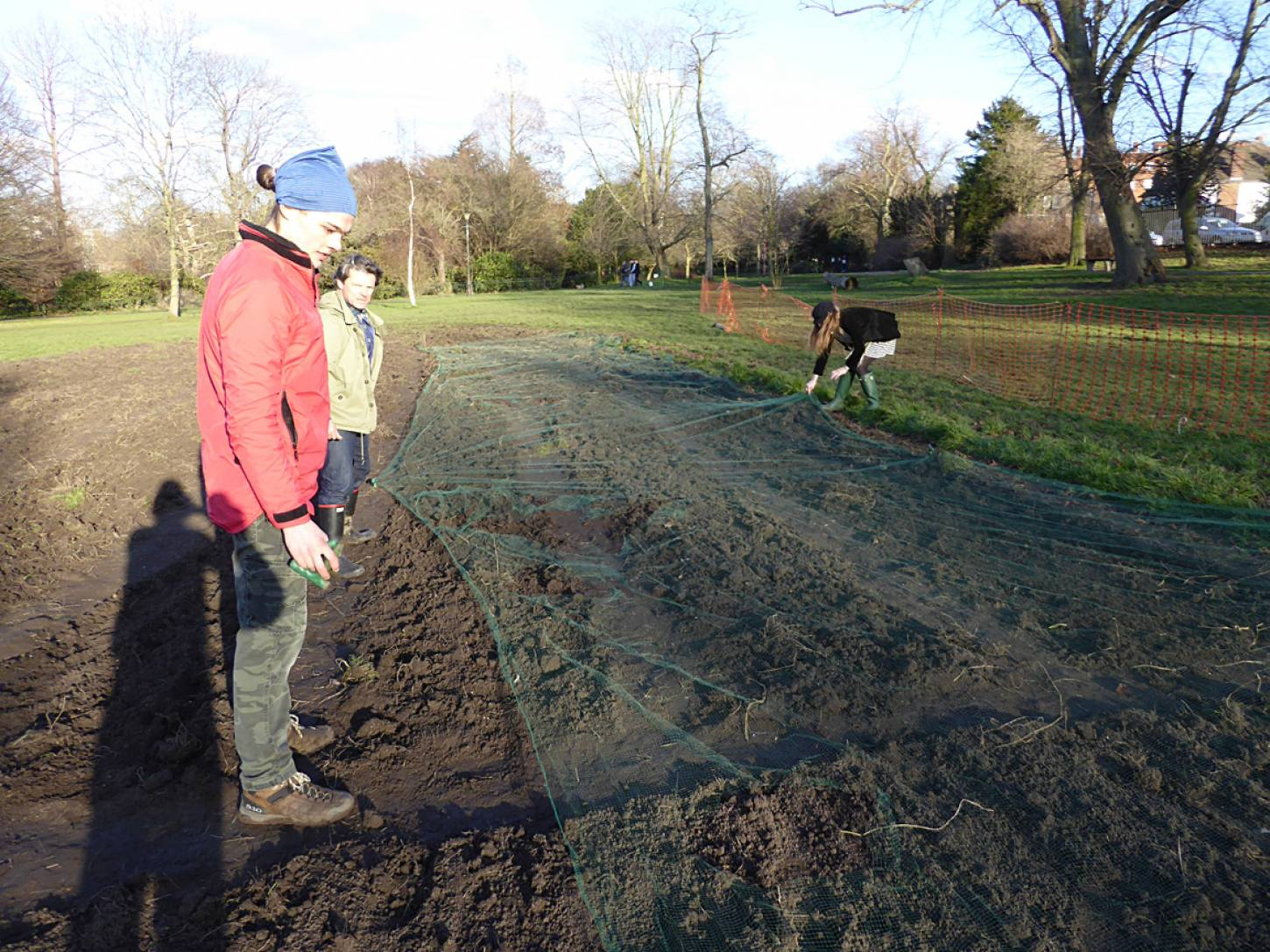 wheat goes in after harrowing on <a href='https://www.friendsofruskinpark.org.uk/' target='_blank'>Ruskin Park</a> - 4:38pm&nbsp;17<sup>th</sup>&nbsp;Feb.&nbsp;'18