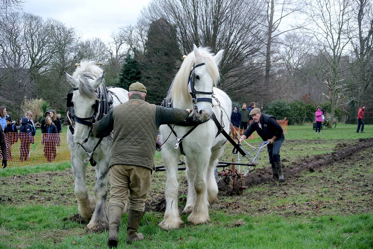 Shire horses, Heath and Nobby with ploughman Tom Nixon from <a href='http://www.operationcentaur.com/' target='_blank'>Operation Centaur</a> come to plough the <a href='https://twitter.com/ruskinparkse5?lang=en' target='_blank'>Ruskin Park</a> wheat patch. Image: Marie Cullen - 12:19pm&nbsp;9<sup>th</sup>&nbsp;Feb.&nbsp;'18