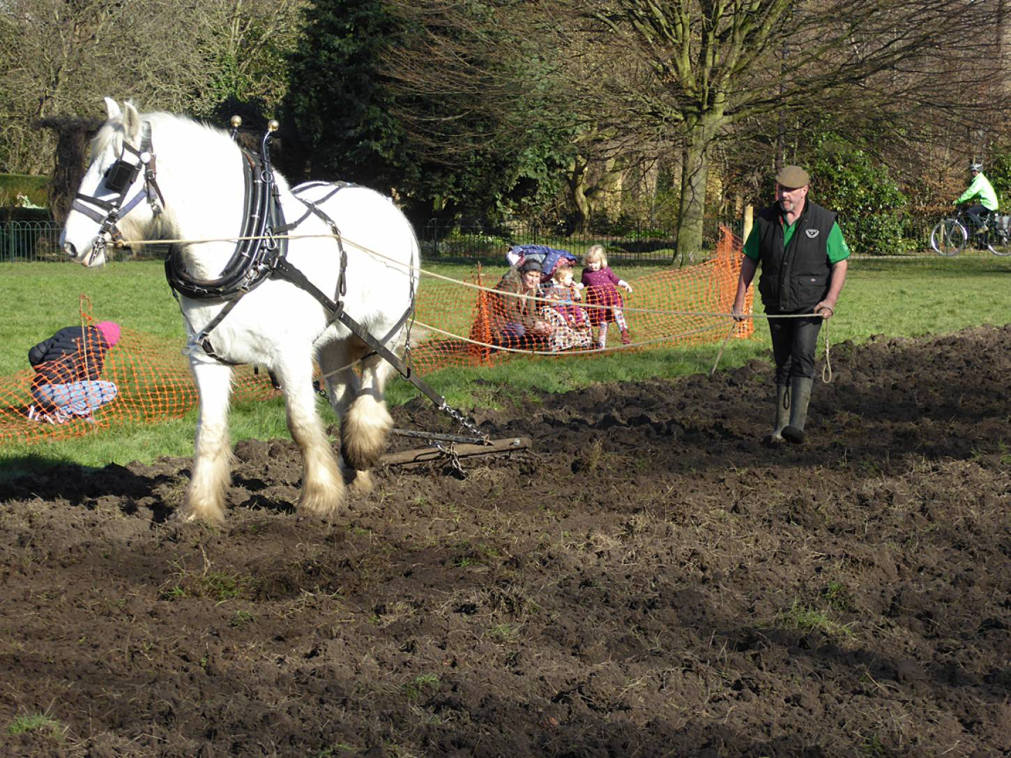 Shire horse Heath and ploughman Tom Nixon from <a href='http://www.operationcentaur.com/' target='_blank'>Operation Centaur</a> return to harrow our wheat patch on <a href='https://www.friendsofruskinpark.org.uk/' target='_blank'>Ruskin Park</a> - 1:46pm&nbsp;17<sup>th</sup>&nbsp;Feb.&nbsp;'18  <a href='http://maps.google.com/?t=h&q=51.464606,-0.092567&z=18&output=embed' target=_blank><img src='http://www.brockwell-bake.org.uk/img/marker.png' style='border:none;vertical-align:top' height=16px></a>