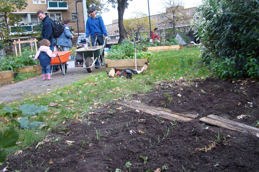Sowing Cottington Estate Community Garden, Kennington 6/11/10