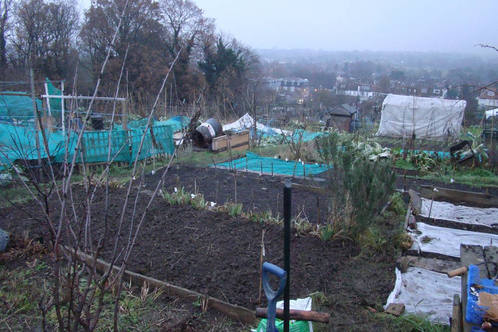 plot 35, more sowing of Brockwell WInter re-mix 30/12/10