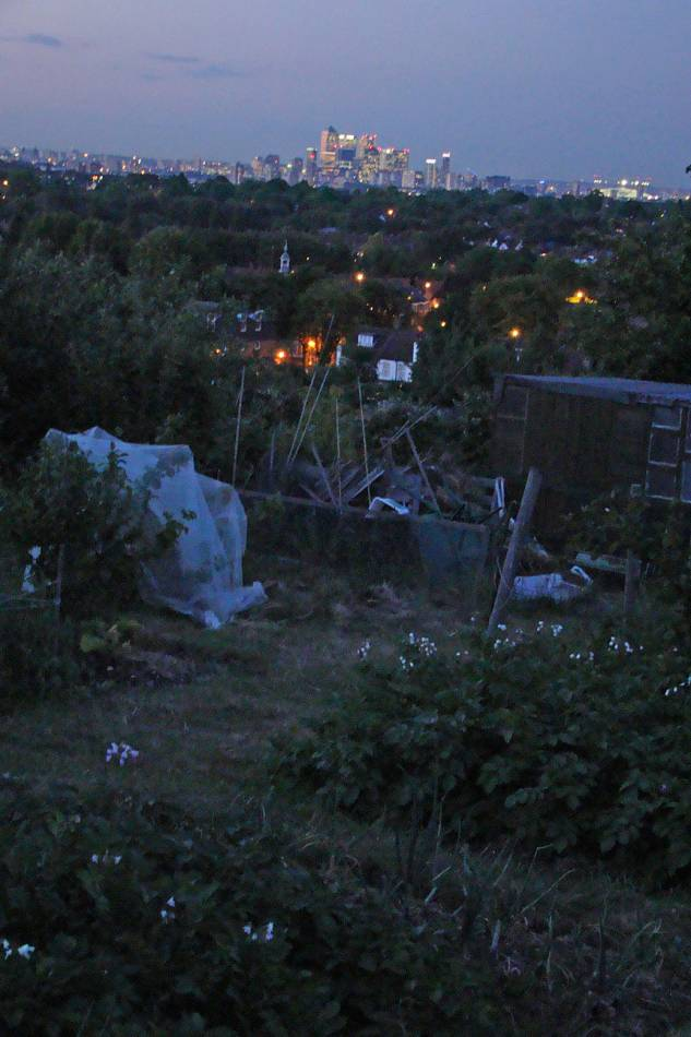 allotments, 28/5/11
