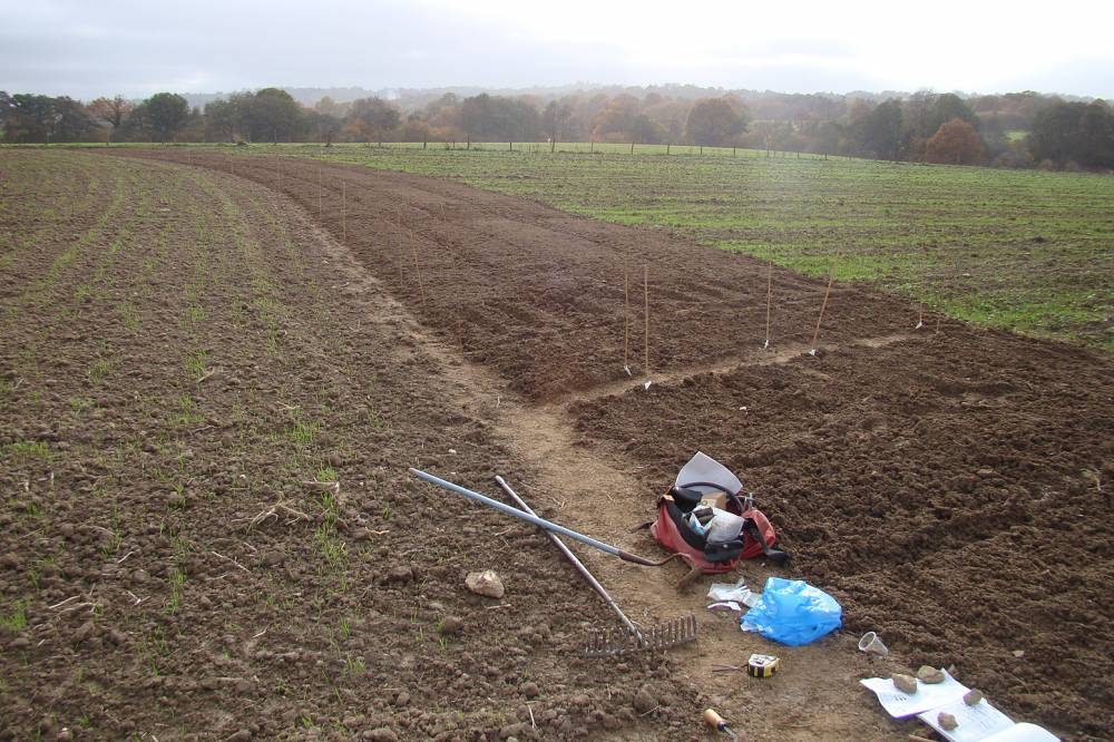 Hophurst Farm, Sussex, trials being sown 4/11/10