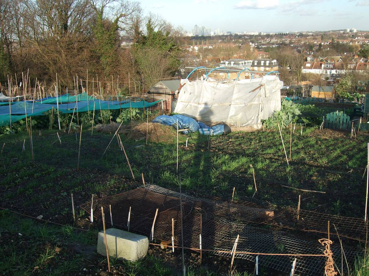 plot 35 & 36 review - 4:23pm&nbsp;27<sup>th</sup>&nbsp;Jan.&nbsp;'12