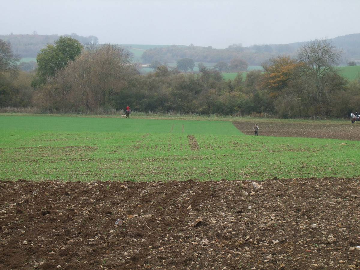 sowing on Westmill Farm, nr. Swindon courtesy farmer Adam Twine, 9/11/11